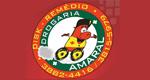 Logo Drogaria Amaral
