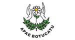Logo Associação de Pais e Amigos dos Excepcionais - APAE de Botucatu
