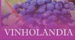 Logo Vinholandia