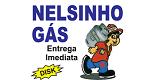 Logo Nelsinho Gás - Loja 2