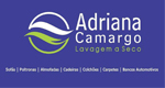 Adriana Camargo Lavagem a Seco