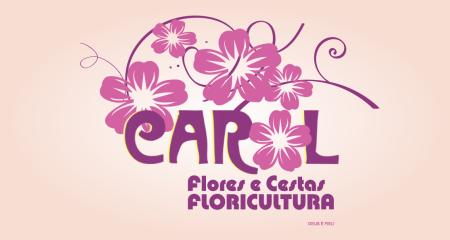 Carol Flores e Cestas