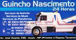 Logo Guincho Nascimento