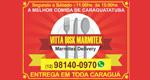 Logo Vitta Disk Marmitex
