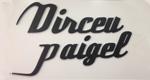 Dirceu Paigel Perucaria