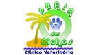 Logo Clínica Veterinária Praia dos Bichos