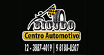 Bicudo Centro Automotivo