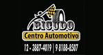 Logo Bicudo Centro Automotivo