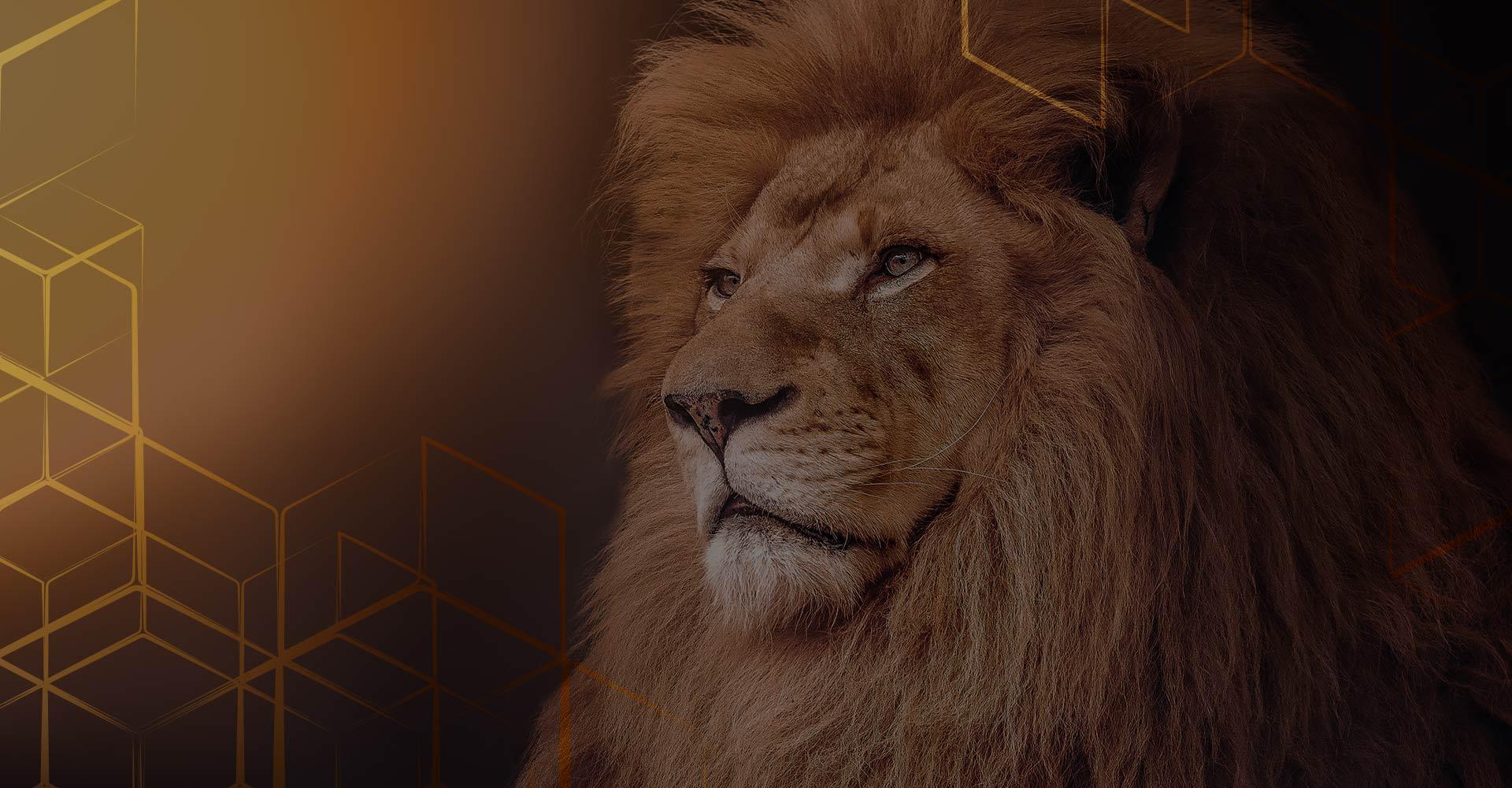 Lions Contabilidade<br>O real não se presume.<br />É simples.