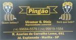 Logo Pingão