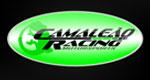 Logo Camaleão Racing - Loja 2