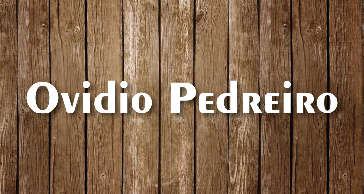 Logo Ovidio Pedreiro