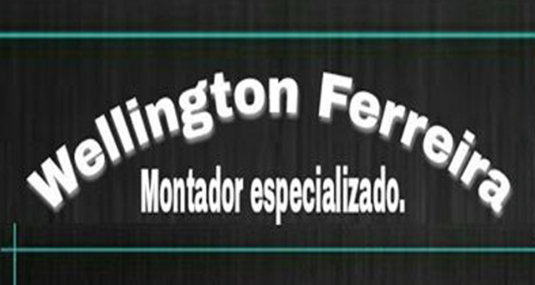 Logo Wellington Ferreira Montador Especializado