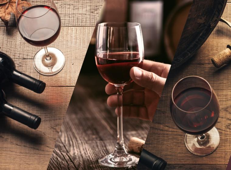 Degustação de Vinhos Harmonizada