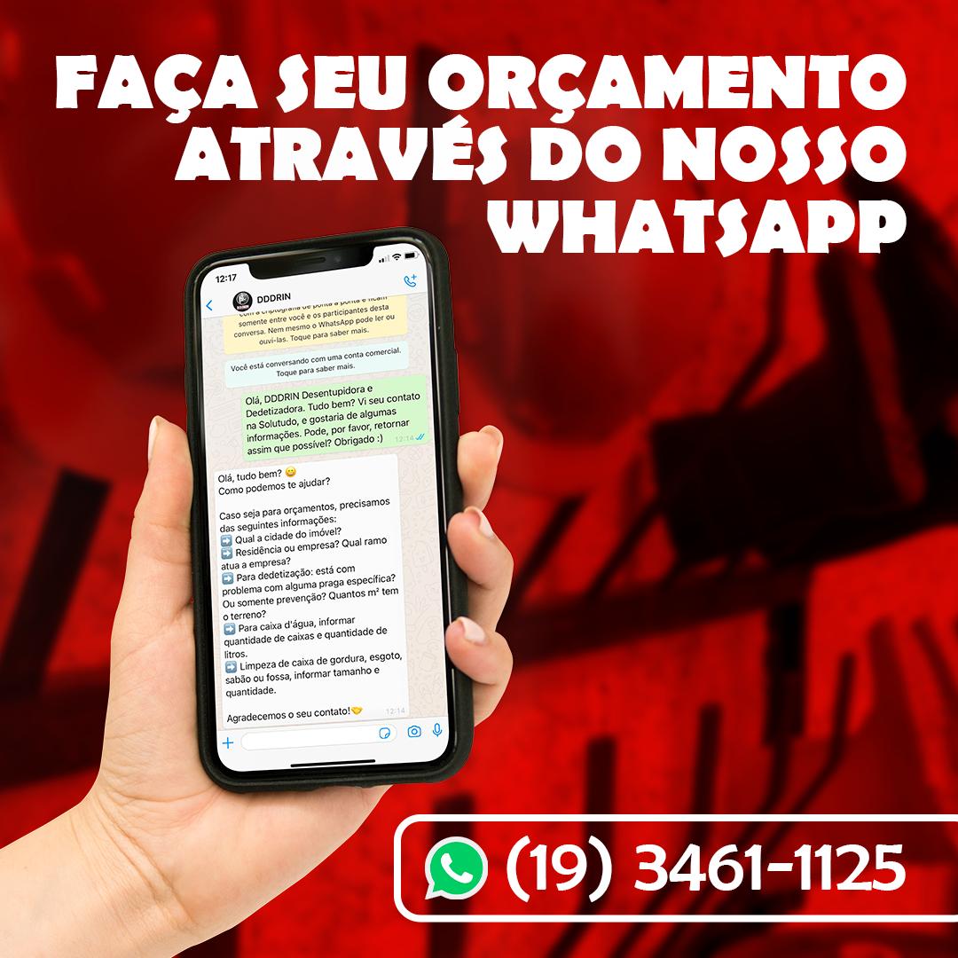 Post-7---Whatsapp